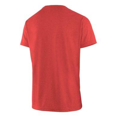Salewa t-shirt uomo BASE CAMP DRI-RELEASE